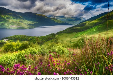 """""""...Where the sun shines bright on Ben Lomond.""""This shot of Loch Lomond was taken from the lower slopes of Ben Lomond, while climbing up from Rowardennan."""