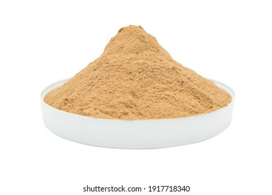 Whey protein powder isolated on white background. Plastic measuring dietary spoon and heap of chocolate shake food drink. Sport workout gym nutrition energy replacement. Exercise muscle body fitness.