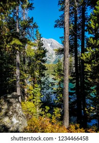 While hiking the forested Leigh Lake Trail in Grand Teton National Park in Wyoming, I found an opening, to reveal a beautiful view of of the lake with a peak looming above in the distance.