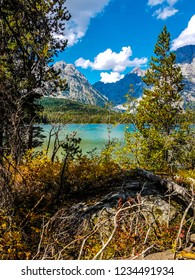 While on the forested Leigh Lake Trail in Grand Teton National Park, I spotted  a beautiful view of Leigh Lake and the Teton Mountain Range enveloped by cumulus clouds.