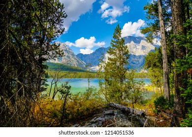 While on the Leigh Lake Trail in Grand Teton NP in Wyoming, my view  through the woods revealed a view of clouds hugging the mountain peaks in the distance. The azure sky is reflected upon  the water.