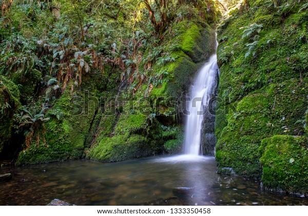 Whisky Creek Waterfall, Dolamore Park at the Hokonui Mountains, Southland, New Zealand.