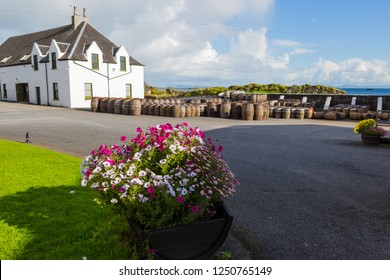 Whisky distillery in Scotland and old wooden barrels and casks stand under open sky maturing Scotch single malt.