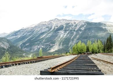 Whispering Wood Ln Field/British Columbia/Canada - Jun 02 2018: Local road Whispering Wood Ln