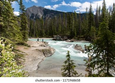 Whispering Wood Ln Field/British Columbia/Canada - Jun 02 2018: Partial view of The Kicking Horse River near the Natural Bridge