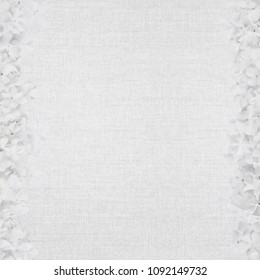 white abstract canvas background with delicate flower frames