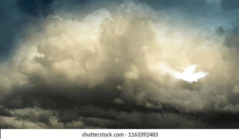 White Abstract Holy Spirit Pentecost Dove Descending from Clouds