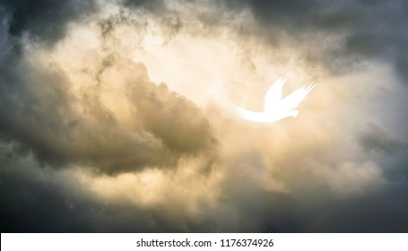 White Abstract Holy Spirit Pentecost Dove Descending from Storm Copy Space