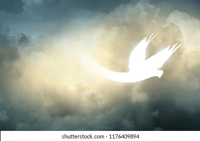 White Abstract Holy Spirit Pentecost Dove Descending from Storm Clouds