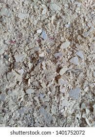 White abstrak texture. closeup texture from cement.