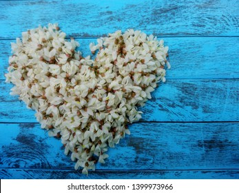 White acacia flowers heart on blue wooden background. Black locust or Robinia pseudoacacia (white acacia) flowers heart - love shape, text space. Floral heart wreath of white acacia flowers, top view