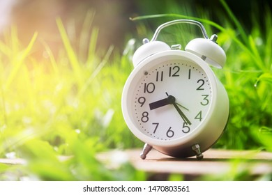 white alarm clock with green grass
