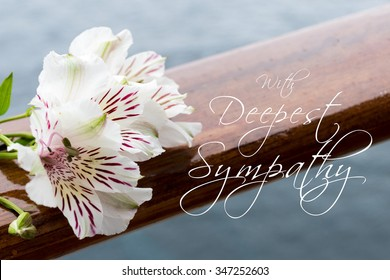 """White Alstroemeria flower with description:""""With deepest sympathy"""""""