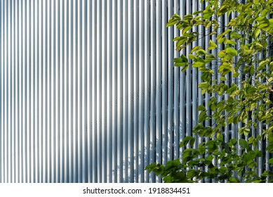 white aluminum fin façade design with tree