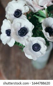 White anemon flowers close up