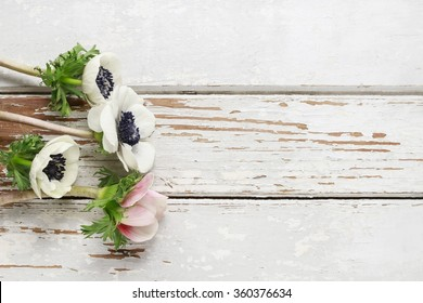 White anemone flowers on rustic wooden background, copy space