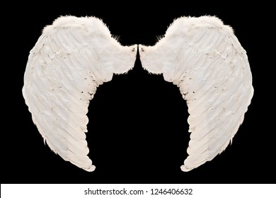 White Angel wings isolated on black background with clipping part