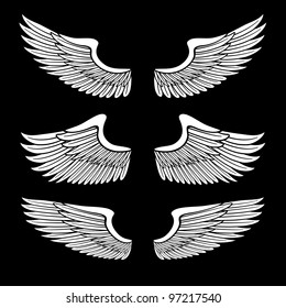 white angel wings set isolated on black