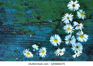 White autumn flowers on old wooden blue surface