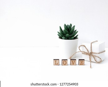 White background for card for women's or mother's day. White gift boxes and succulent. Love. Valentines day.