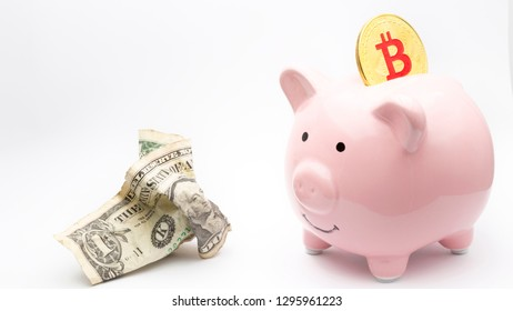 in the white background and copy space the piggy bank and bitcoin like concept of money and investment