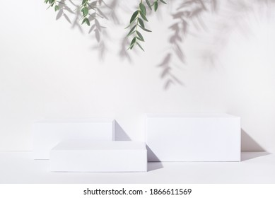 White background for cosmetic products. Rectangular podiums with the shadow of the branches of the eucalyptus.
