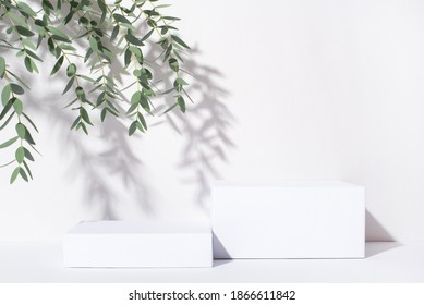 White background for cosmetic products. Rectangular podiums with the shadow of the branches of the eucalyptus. - Shutterstock ID 1866611842