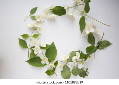 white background with lily of the valley on the edge