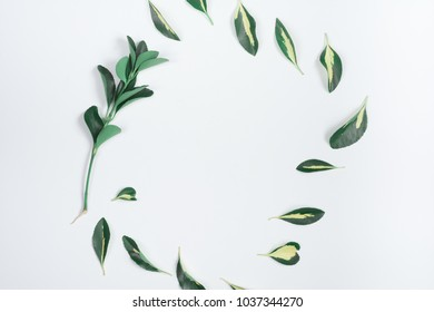 White background with yellow-green leaves and keyboard