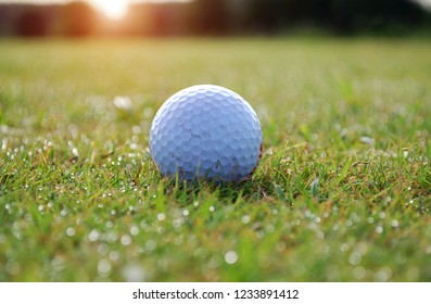 White ball on the golf course