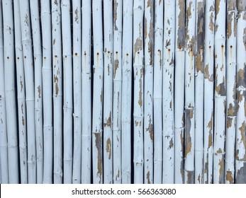 White bamboo fence