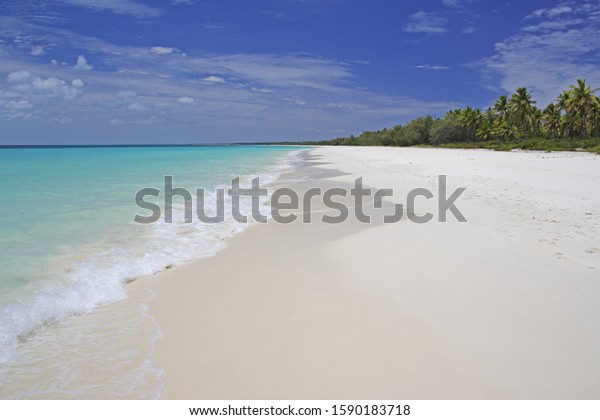 White Beach with Palm Trees and turquoise ocean of Ouvea Island, Loyalty Islands, New Caledonia, Overseas Territory of France