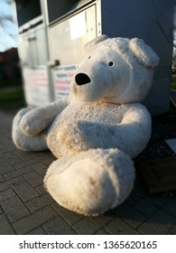 white bear, Lost and found