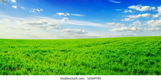 white beautiful clouds and a green field