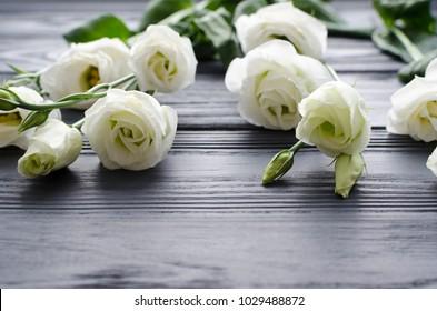 white beautiful  eustoma flowers on grey wooden background