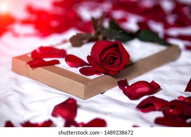 White bed honeymoon, Red roses on a bed decoration in bedroom.Valentine background.honey moon.