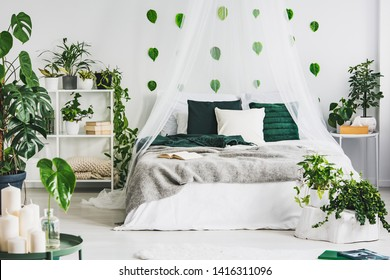 White bedroom interior with king size canopy bed, shelf with books and plants, urban jungle and green leaf on the wall
