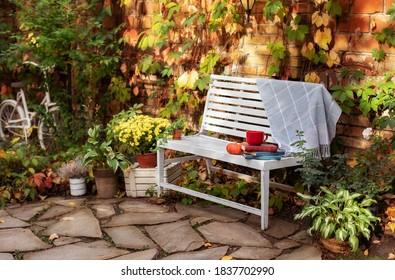 White bench in autumn garden. Autumn outdoor relax. Backyard garden grow decorative green plants and chrysanthemums. Decor autumn yard. Pile of books, cup of tea, plaid and pumpkin lie on wooden bench