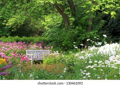 white bench in a beautiful garden