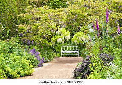 White bench at the end of sandy path under white and blue wisteria, surrounded by colourful cottage flowers and herbs on a summer day after rain, romantic settings