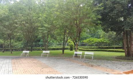 White benches in a garden