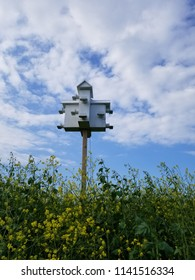 White bird condo on a wooden pole in a field of wildflowers, framed by a blue sky with clouds. Perspective vertical view.