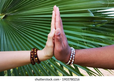 white and black hands of teenagers in bracelets on the background of a large green tropical leaf