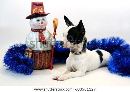 cfc7d7c353a White with black patches short-haired Chihuahua puppy with wood carved  snowman on a white
