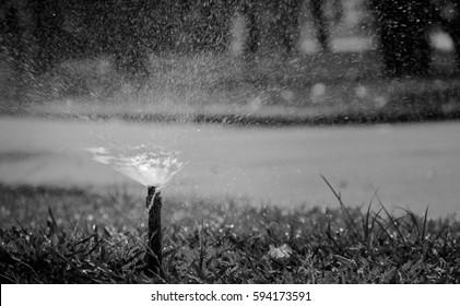White and black sprinkler irrigation running.