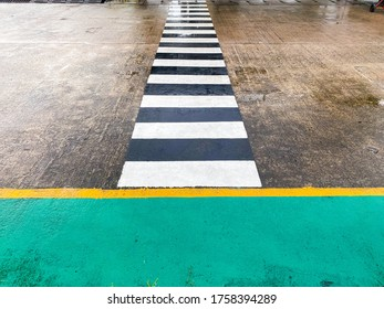 White and black zebra line on the road after rain, Soft focus