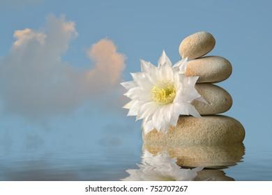 white blossom with stone pyramid