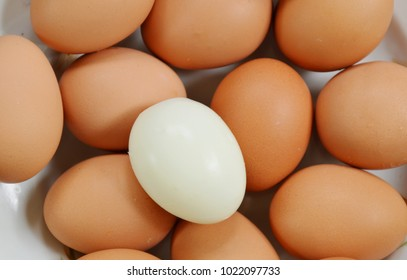 white boiled egg peel out on plate
