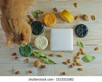 White box for a gift. Wood texture background. Box for soap. Natural soap. The cat is next to the box. Red cat and a gift.
