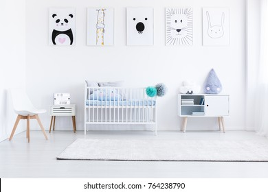 White boy's bedroom with white furniture and animal posters on wall